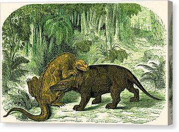 Canvas Print featuring the photograph Iguanodon Biting Megalosaurus by Wellcome Images
