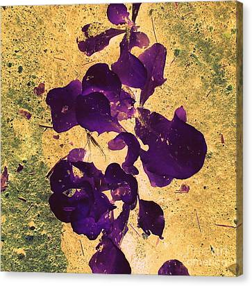 In The Garden Canvas Print