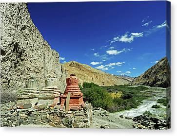 Tibetan Canvas Print - India, Ladakh, Markha Valley, White by Anthony Asael
