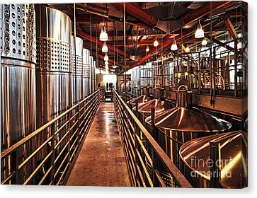 Aging Canvas Print - Inside Winery by Elena Elisseeva