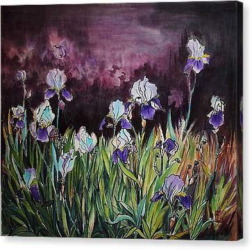 Iris In My Backyard Canvas Print