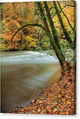 Irrel Falls Canvas Print