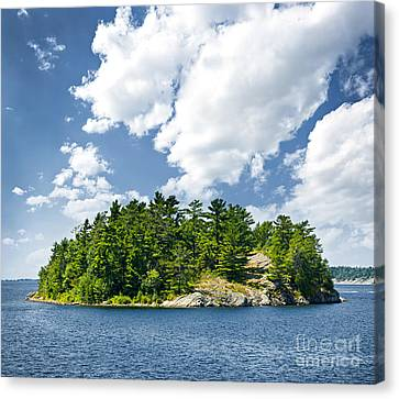 Island In Georgian Bay Canvas Print by Elena Elisseeva