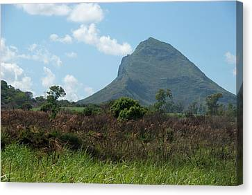 Island Of Mauritius Canvas Print by Cindy Miller Hopkins