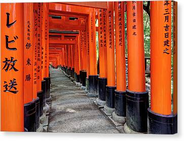 Torii Canvas Print - Japan, Kyoto Torii Gates by Jaynes Gallery