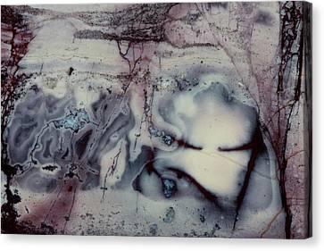 Jasper Rock Slab Canvas Print