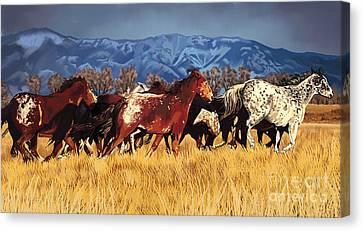 Joe's Horses Canvas Print by Tim Gilliland