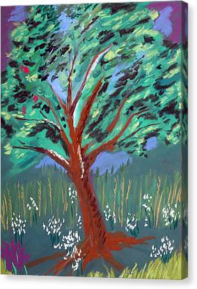 Johnny Appleseed Canvas Print by Randy Ross