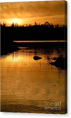 Jordan Lake Sunset Canvas Print by Larry Ricker
