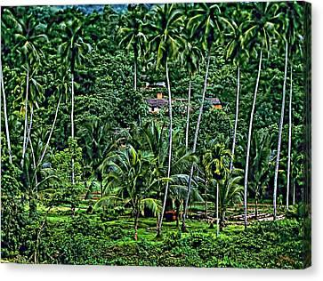 Jungle Life Canvas Print by Steve Harrington