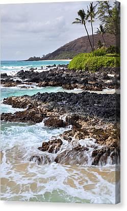 Keanae Lava Rock Canvas Print by Jenna Szerlag