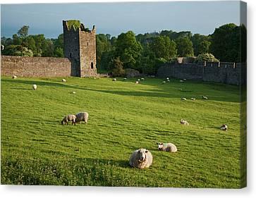 Kells Priory  Count Kilkenny, Ireland Canvas Print by Carl Bruemmer