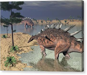 Kentrosaurus Dinosaurs Walking Canvas Print