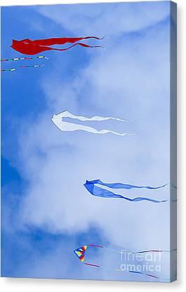 Kites On Ice Canvas Print by Steven Ralser