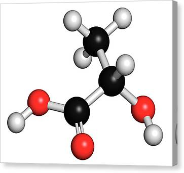 Lactic Acid Milk Sugar Molecule Canvas Print