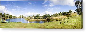 Beautiful Creek Canvas Print - Lake Waratah In North-west Tasmania Australia by Jorgo Photography - Wall Art Gallery