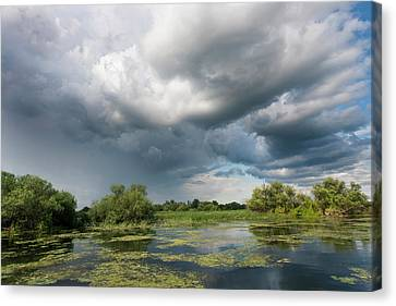 Flooding Canvas Print - Lakes In The Danube Delta, Romania by Martin Zwick