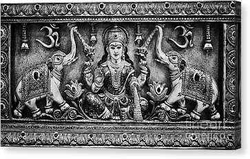 Lakshmi  Canvas Print by Tim Gainey
