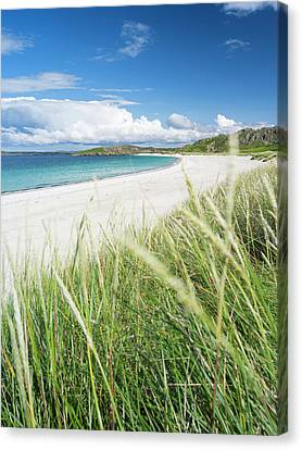 Landscape In The Northern Part Canvas Print by Martin Zwick