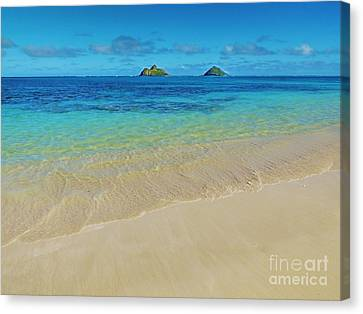 Canvas Print - Lanikai Paradise by Kristine Merc