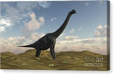 Large Brachiosaurus In A Barren Canvas Print