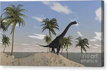 Large Brachiosaurus Roaming An Tropical Canvas Print