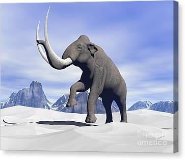 Large Mammoth Walking Slowly Canvas Print