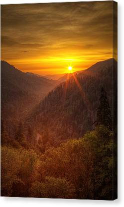 Last Rays Canvas Print by Andrew Soundarajan
