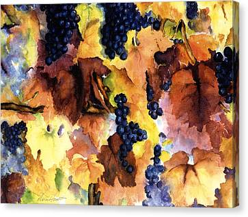 Vineyard In Napa Canvas Print - Late Harvest 3 by Maria Hunt