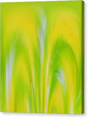 Lemon Lime Canvas Print by Patricia Kay