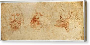 Leonardo Da Vinci, Profile Canvas Print by Everett