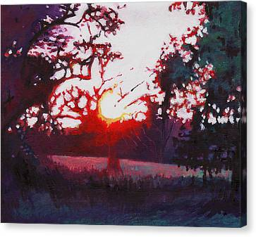 Light Grounding Canvas Print by Helen White