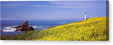 Lighthouse On The Coast, Pigeon Point Canvas Print by Panoramic Images