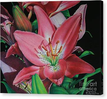 Lily's Garden Canvas Print by Pamela Clements