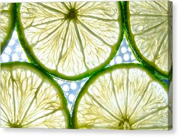 Lime. Canvas Print by Slavica Koceva