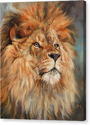 Lion Canvas Print - Lion by David Stribbling