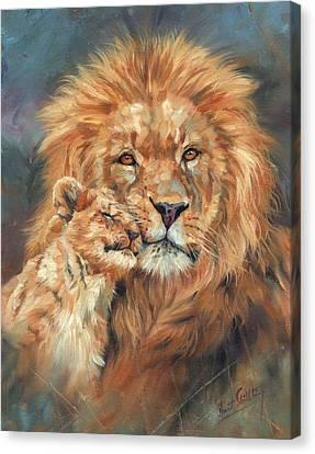 Lion Love Canvas Print by David Stribbling