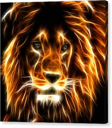 Macros Canvas Print - Lion  by Mark Ashkenazi