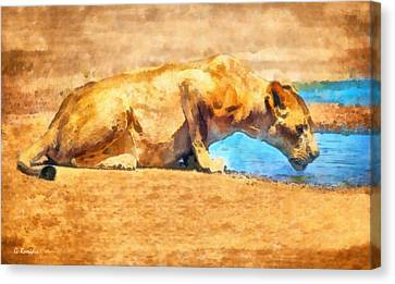 Masai Canvas Print - Lioness Drinking by George Rossidis