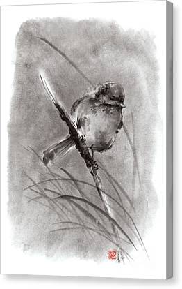 Little Bird On Branch  Canvas Print by Mariusz Szmerdt