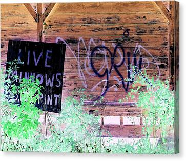 Live Minnows Canvas Print by Dietrich ralph  Katz