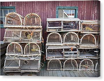 Lobster Traps Canvas Print by Elena Elisseeva