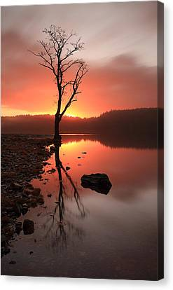 Loch Ard Sunrise Canvas Print by Grant Glendinning