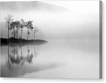 Loch Ard Trees In The Mist Canvas Print by Grant Glendinning