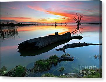 Loch Luna Sunset Canvas Print by Bill  Robinson