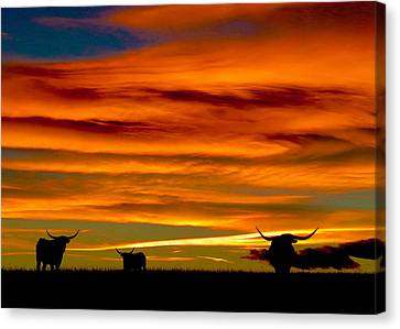 Longhorn Sunset Canvas Print