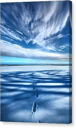 Looking Back Canvas Print by Phil Koch