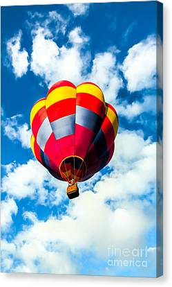 Looking Up Canvas Print by Robert Bales