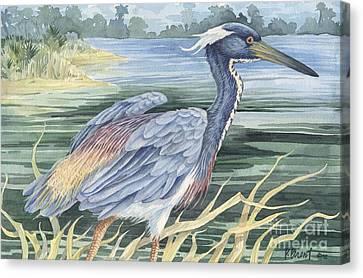 Louisiana Heron Canvas Print by Paul Brent