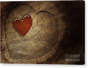 Love Text On  Wooden Background Canvas Print by Mythja  Photography